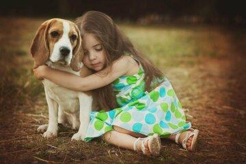 BeNNi-Hunde-erkennen-Gefuehle-1200×800