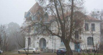 На Харківщині продають старовинну садибу більше ніж на 800 кв. м: вартість фантастична
