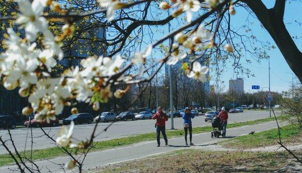погода весна прогноз погоды апрель люди