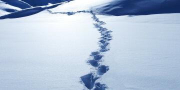следы, снег, йети