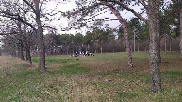 В Одессе женщин застукали за странным занятием в лесу: кадры происходящего
