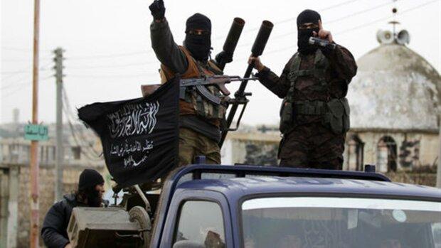 Пентагон розповів про біологічну зброю бойовиків ІДІЛ