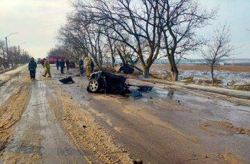 Авто попало в фатальное ДТП, удалось выжить лишь одному:  подробности и кадры трагедии
