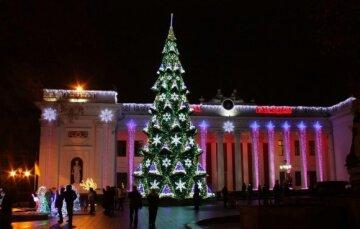 елка Одесса