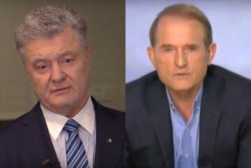 Петр Порошенко, Виктор Медведчук