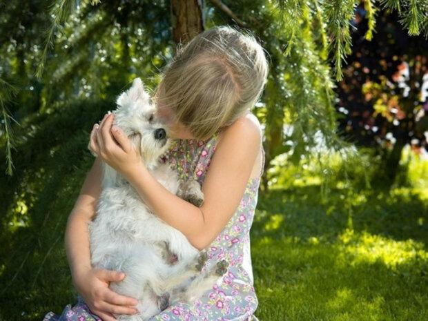 Каких животных нельзя заводить семьям с детьми: «Должны быть безопасными»