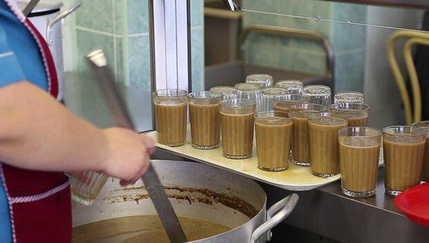 какао столовая школа