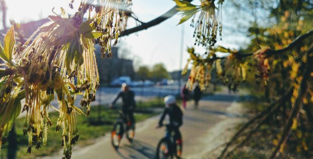 погода весна апрель люди велосипед