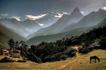 Восточные Гималаи природа