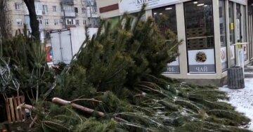 В Одессе начали охоту на елочных бизнесменов, фото