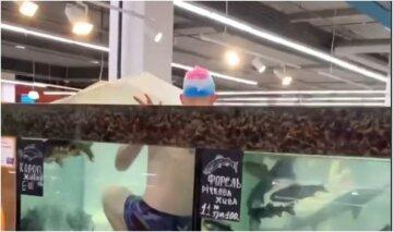 """Хлопець одягнув плавки і пірнув в акваріум посеред магазину, відео: """"Рибки такого не заслужили"""""""