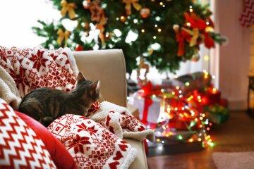 новый год 2019, подарки, елка, кот