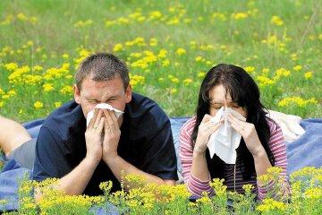 аллергия пыльца