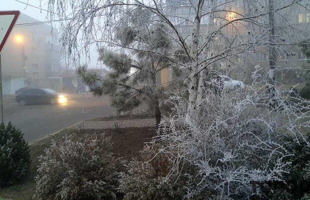 """Замерзший туман украсил Одесскую область: """"Серебряная сказка"""""""