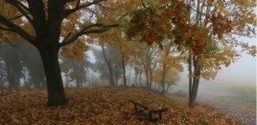 осень ноябрь
