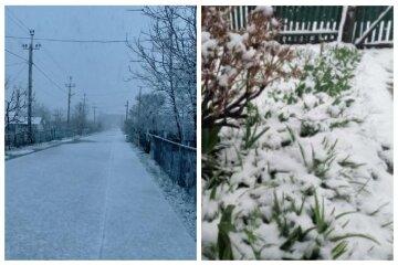 Одесскую область засыпало снегом посреди весны: кадры аномалии разлетелись по сети