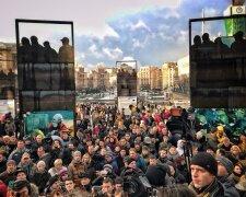 Майдан-акция- Крысина за решетку
