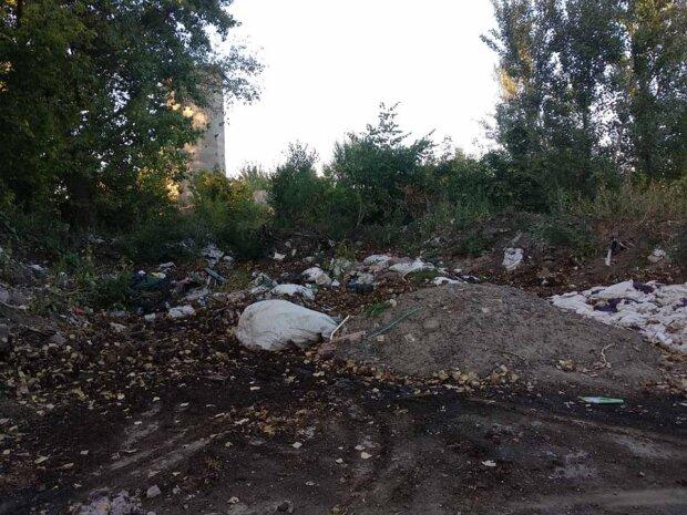"""Под Днепром тонны овощей валяются под открытым небом, фото: """"вместо того, чтобы дать нуждающимся..."""""""