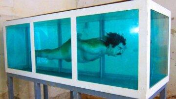 Вчені зловили акулу-ровесницю Шекспіра: найстаріша на планеті, фото гіганта