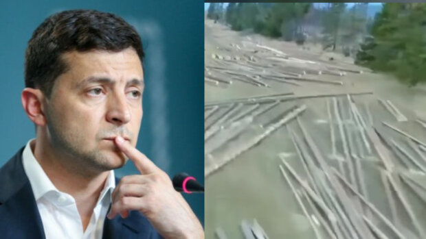 """""""Классные видосики можно снять, где Зеленский?"""": украинцам показали, что творят с лесами Карпат"""