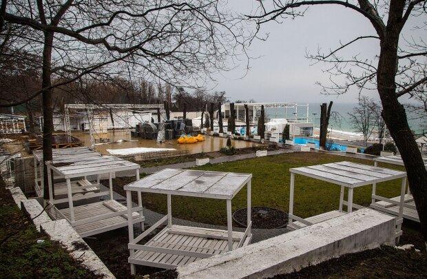 На популярном пляже в Одессе уничтожили деревья ради ресторана: кадры варварства