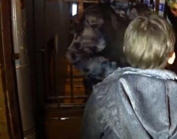 """Поліцейський побив 12-річну дитину на Донбасі: """"Приїхав на службовій машині і..."""""""