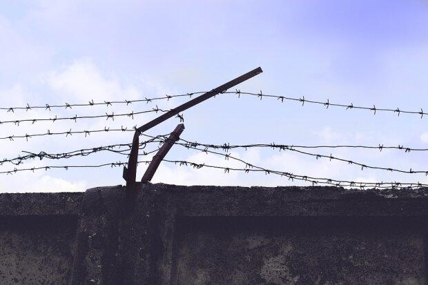 проволока забор