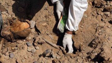 захоронение раскопки