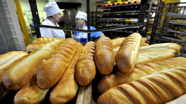 У харківський супермаркет завезли хліб з гризунами: моторошне відео