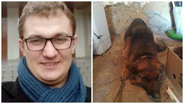 """""""Пустили тузика с молотка"""": задолжавшие за коммуналку украинцы расплачиваются собаками, Брагар ликует"""