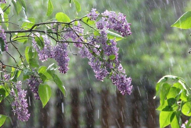 Погода на 17 апреля