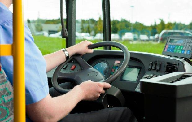 водитель, автобус