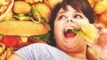 вредная еда, гамбургер, лишний вес