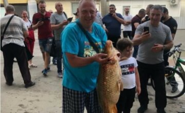 """Мужчина в подтопленных Черновцах поймал руками огромного карпа в луже, видео: """"не менее 10 кг"""""""