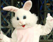 пасхальный кролик костюм