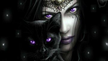 Animals___Cats_____Purple_eyes_081948_