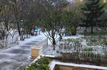 """В Киеве возле больницы нашли босого парня: """"прятался между деревьев и..."""""""