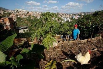 Голодающим жителям Венесуэлы предложили самим выращивать еду