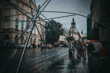 львов, дождь