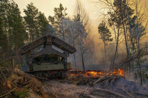 Пожежі підібралися до ЧАЕС і радіоактивних відходів, рятувальники в розпачі: що приховує влада, фото