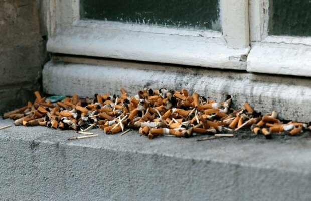 окурок окурки сигарета