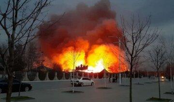 Масштабна пожежа на Одещині, вогонь охопив велику територію: відео НП