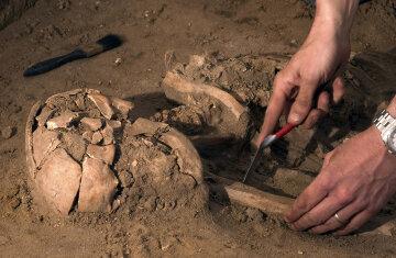 ученые, археологи. раскопки