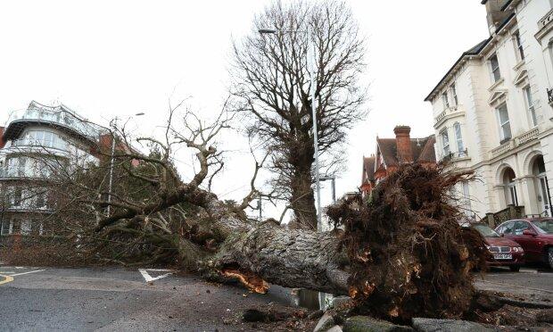 Торнадо в США срывает крыши домов (видео)