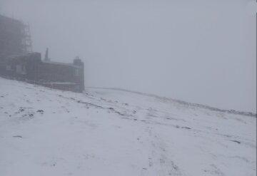 """""""Лето в этом году будет?"""": Украину в конце весны замело снегом, неожиданные фото"""