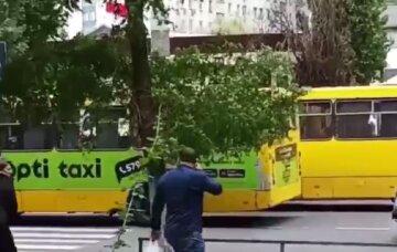 """В Одессе маршрутки устроили """"гонки"""" и сбили подростка, видео: """"Так увлеклись"""""""