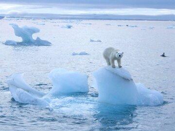1490267103_pg-6-arctic-ice-pa
