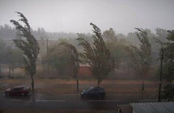 Август принесет в Украину град и грозы: где начнет лить уже в субботу