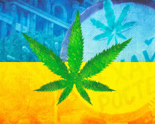 коллаж конопля марихуана