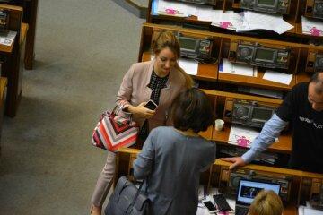 Не для обычных людей: сколько стоят сумки нардепок в Раде, фото роскоши